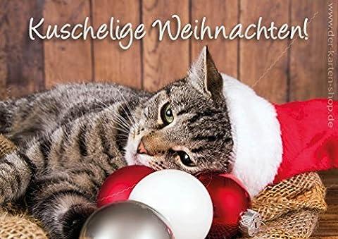 3 Stück Doppelkarte mit Kuvert Katzenkarte Weihnachtskarte Katze kuschelige Weihnachten (Katze Weihnachtskarten)