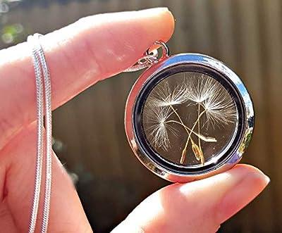 Médaillon en argent avec chaîne en argent sterling collier de graines de pissenlit - médaillon magnétique collier de pissenlit bijoux uniques pour femmes