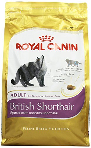 royal-canin-breed-nutrition-british-shorthair-34-croquettes-4-kg