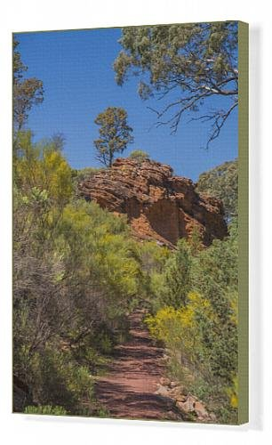canvas-print-of-wilpena-canyon-flinders-ranges-outback-south-australia