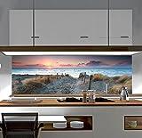 Küchenrückwand Spritzschutz Fliesenspiegel Wandbild Acrylglas SP445
