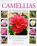 Camellias: A Step-by-step Handbook for Cultivation and Care (New Plant Library)