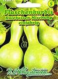 Flaschenkürbis Kürbis Kalebassen Mischung rankend 'Lagenaria siceraria' Schalenschmuck
