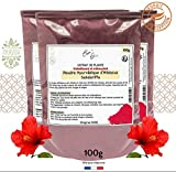 Poudre Ayurvédique d'Hibiscus 100g Cosm'Ethics 100% pure et naturelle, qualité...