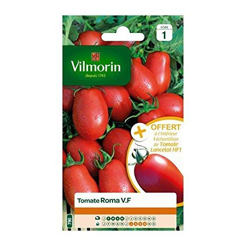 VILMORIN Tomate Roma V.F Sachet de graines - Echantillon tomate Surya