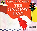 The Snowy Day A picture book showing a small boy's adventures on a snowy day - making tracks in the snow, smacking snow-covered branches, getting into a snowball fight, making a snowman. The book has won the Caldecott Award.