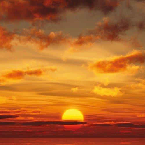 Apple iPhone 5s Housse Étui Protection Coque Coucher de soleil Ciel Nuages Étui en cuir marron