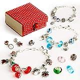 Red Bomb - Bijoux de Charme Bracelet Plaqué Argent avec Chaîne à Serpent DIY avec 45 Bijoux Bijoux Beau Cadeau pour Femme et Fille