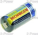 2-Power VBI0262A batería para cámara/grabadora Ión de Litio 500 mAh - Baterías para...