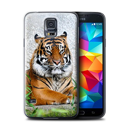Stuff4® Hülle/Hülle für Samsung Galaxy S5/SV/Tiger Muster/Wilde Tiere Kollektion