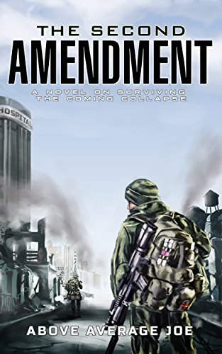 2nd Amendment - The Call To Arms: A Story of the Imminent Collapse (English Edition)