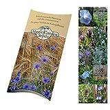 Samen-Geschenkset: 'Blaue Blüten', 6 hellblau, violett und dunkelblau blühende Blumen für den Garten