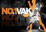 20inch x 14inch/50cm x 35cm Novak Djokovic Silk Poster