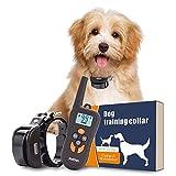 PetInn Wasserdicht Erziehungshalsband für Hunde mit Fernbedienung, Wiederaufladbar Trainingshalsband mit Stärker Vibration und Ton