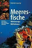 Meeresfische Westeuropas und des Mittelmeeres