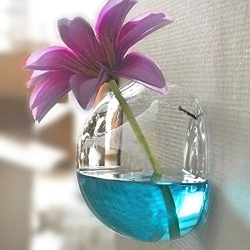 Rosepoem Glas Blumen Pflanzer Vase Wandbehang Pflanze Terrarien Glas Wasserpflanze Pflanzer Hausgarten Party Wall Decor Nicht enthalten weiße kleine Nagel (Weiße Glasschalen Kleine)