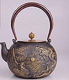Alter Eisentopf Teekanne Kochen Eisentopf Japan Südlich Gesundheit Wasserkocher Unbeschichtet Eisen Teekanne