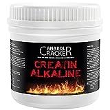 Testo Power, Protein Creatin, 2600g Dose, Frucht Geschmack + 240 Creatin Alkaline Kapseln, Anabol Cracker - 5