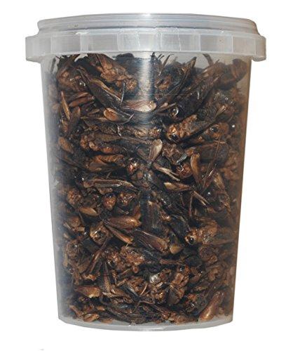 500 ml Grillen gefriergetrocknete / getrocknet | Reptilienfutter, Schildkrötenfutter, Futtertiere Igelfutter Vogelfutter