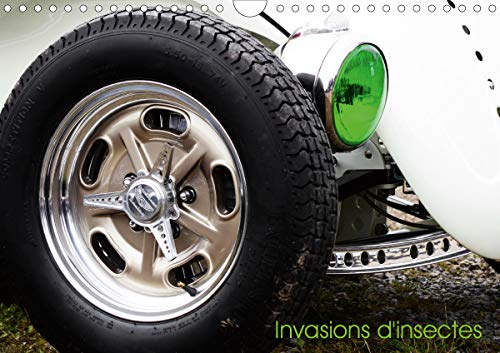 Invasion d'insectes (Calendrier mural 2020 DIN A4 horizontal): Un calendrier pour les passionnés de la Coccinelle de Volkswagen (Calendrier mensuel, 14 Pages ) (Calvendo Mobilite) (Racing Motoren Horizontale)