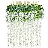Plantas Colgantes Decorativas simil Hiedra
