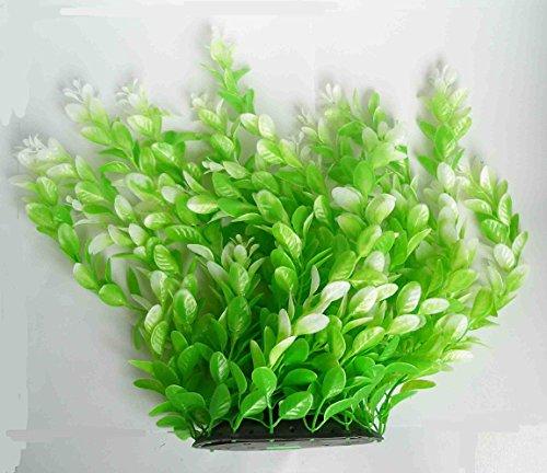 pianta-piantina-ornamentale-in-plastica-30-cm-decoro-acquario-terrario