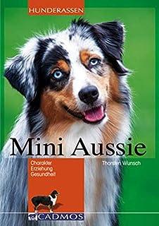 Australian Shepherd Erziehung Hundeerziehung Fur Deinen