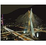 LIWEIXKY Rahmenloses Ölgemälde Oliver Bridge Nachtlichtmalerei Nach Zahlen Bemalen Leinwand Für Wohnkultur 40X50Cm
