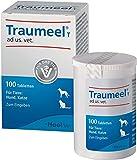 TRAUMEEL Schmerzmittel
