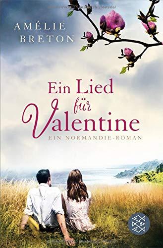 Ein Lied für Valentine: Roman