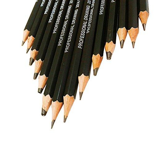 KINSO 14 Stück Skizze Bleistifte Künstler Graphitstifte Set kizze Kunst Zeichnung Bleistift 12B, 10B, 8B, 7B, 6B, 5B, 4B, 3B, 2B, B, HB, 2H, 4H, 6H (Skizze Bleistifte Zeichnung)