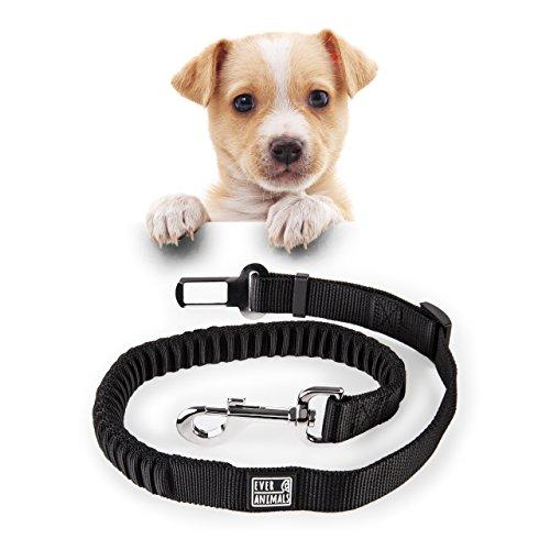 Flexibler Sicherheitsgurt Für Hunde Im Auto | Autogurt | Hundegurt | Anschnallgurt Um Hunde im Auto Zu Sichern | Hundeleine Gurtschloss | Hundeschutz Sicherheitsgurt | Von Everanimals