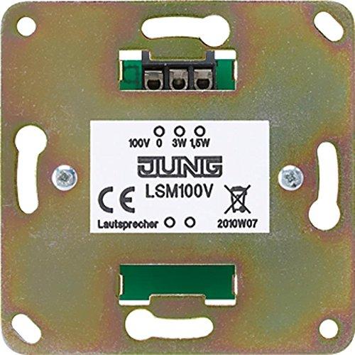 100-v-Übertrager (Jung LSM100V 100 V Uebertrager)