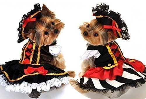 Fancy Me Mädchen Haustier Hund Katze Piraten Mädchen Halloween Kostüm Kleid Outfit S-XL - Gestreift Rock, L (Das Schwarze Korsett Piraten Kostüm)