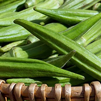 Vegetable Okra Clemsons Spineless Appx 85 seeds Oriental