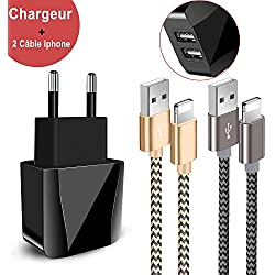 Chargeur USB,Prise USB Secteur Chargeur Secteur USB 2 Ports avec Chargeur Phone[1.5m/Lot de 2] Compatible Cable Phone 11/XS/XSmax/XR/R/8/8plus/7/7plus/6/6S/6plus/Se/5s/5c/5, Pad 2/3 /4 Mini(Or,Gris)