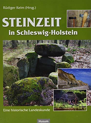Steinzeit in Schleswig-Holstein: Eine historische Landeskunde