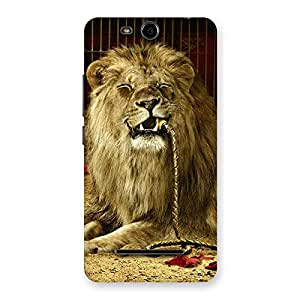 Cute Dude Lion Multicolor Back Case Cover for Micromax Canvas Juice 3 Q392