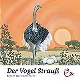 Der Vogel Strauß (Rieder Tierkinderbücher)