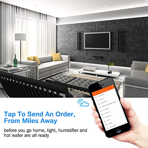 Zoom IMG-1 presa intelligente houzetek smart wifi