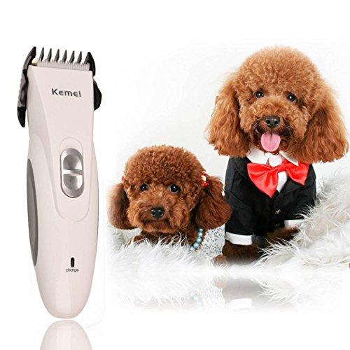 inkint Professionnelle Rechargeable Pet/Animaux Tondeuse à Cheveux Electrique en Céramique Lame Remover Cutter Toilettage Pour Animaux Pet Coupe de Cheveux/Haircut