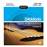 D\'Addario Cordes en bronze phosphoreux pour basse acoustique D\'Addario EXPPBB170, cordes longues, 45-100