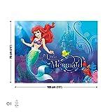 Disney Arielle die Meerjungfrau Leinwand Bilder (PPD663O1FW)