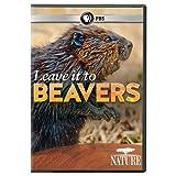 Nature: Leave It to Beavers [DVD] [Region 1] [US Import] [NTSC]