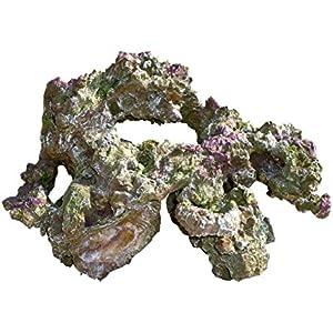 Haquoss Rock Viva in Harz 4, 30x 21x 19h cm