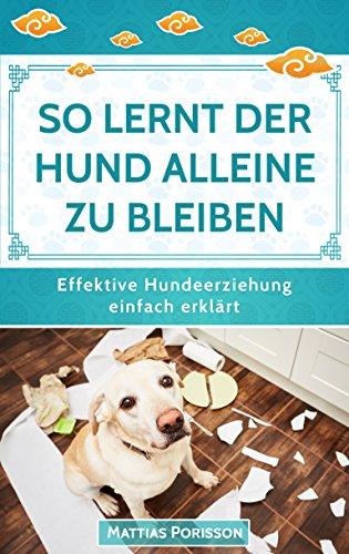 So lernt der Hund alleine zu bleiben: Den Hund ans alleine bleiben gewöhnen - so klappt es! (Effektive Hundeerziehung - einfach erklärt! Band 6)