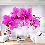Fototapeten Orchidee Pink 352 x 250 cm Vlies Wand Tapete Wohnzimmer Schlafzimmer Büro Flur Dekoration Wandbilder XXL Moderne Wanddeko - 100% MADE IN GERMANY - Runa Tapeten 9012011a