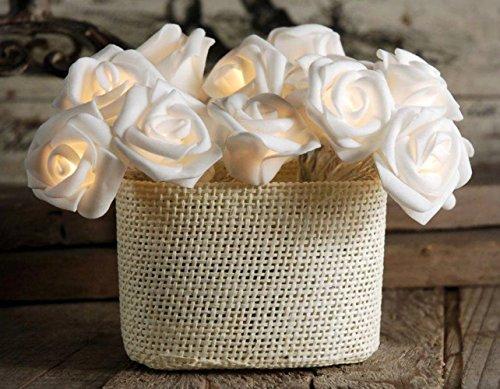 20er LED Rosen Lichterkette innen Warmweiß Batteriebetrieben lichterkette für Schlafzimmer Kommode Schaukasten Geschenk Mädchen-Raum -
