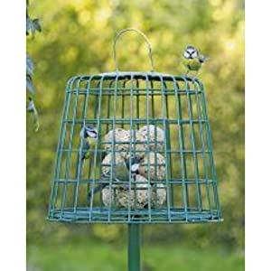Bird Feeder Fat Ball And Suet Guardian by C J Wild bird Food