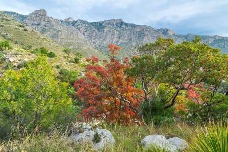 feeling-at-home-kunstdruck-tx-guadalupe-mountains-np-devils-hall-trail-cm40x60-poster-fuer-rahmen